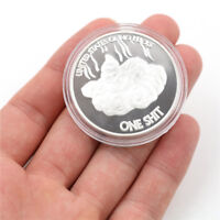 Silver Plated Lucky Dogshit Commemorative Coin Souvenir Coin Funny Gifts BH