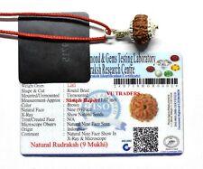 9 Mukhi Rudraksha Nine Face Rudraksh Java Bead Lab Certified 14-16 MM in Silver