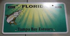 Florida Sample Prototype License Plate Blank Tampa Bay Estuary