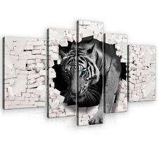 CANVAS Wandbild Leinwandbild Bild Katze Tiger Meuer Ziegel Wand Tier 3FX10400S4A