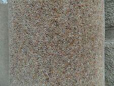 Cheap Carpet Remnant / Roll End Andrea Ghana 4x2.29m Warrington