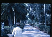 1969 35mm Kodachrome Photo slide  Ringling Museum of Art Sarasota FL #3