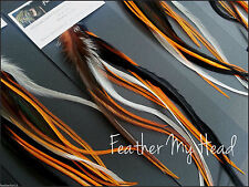 12 Harley Hog Wild Mix Natural Feather Hair Extension Feathers Do It Yourself L2