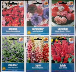 Flower Seed Collection F6/3.A Lovely Set of 6 Packets of Seeds Ideal For Borders