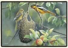 """DOORMAT--18"""" X 27""""--NORTHERN ORIOLE by Fiddler's Elbow"""