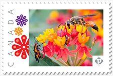 uq. BEE = BUG = LADYBUG = WASP = Picture Postage MNH-VF Canada 2019 [p19-02sn27]
