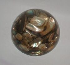 PAPERWEIGHT GENUINE ABALONE MADE IN CALIFORNIA-MODELED BY HAND-ORIGINAL STICKER
