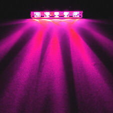 PINK 5 LED Pod Glow Marine Stern Deck Step Courtesy Accent Light Kit for Boat