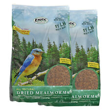 Dried Mealworms 22 lb. - High Protein Insects - Sugar Glider, Chicken, Wild Bird