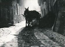 BRAMANS c. 1935 - Âne Mulet Charette Rue du Village Savoie - Div 11277