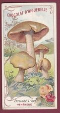 Chromo CHOCOLATERIE D'AIGUEBELLE 230613 - champignon entolome livide vénéneux