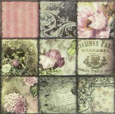 20x Lunch Paper Napkins Serviettes Party, Decoupage- Vintage Collage Paris