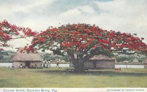 Fiji Village Scene Sigatoka River