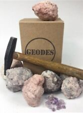 Break Crack Open Mexican Amethyst Geodes Boxed Gift Pack (10 Geodes) 2""