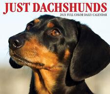 Just Dachshunds (dog breed calendar) 2021 Box Calendar (Free Shipping)