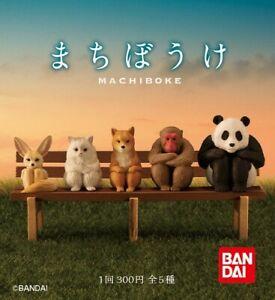 Bandai Gashapon Capsule Waiting Animal Machiboke Full Set 5 pieces