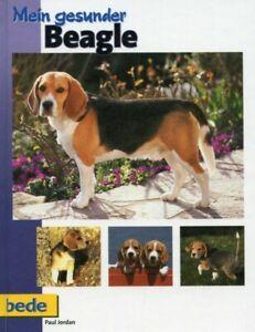 Mein gesunder Beagle / Paul Jordan