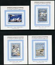 Mauretanien 1994 Vögel Möwe Alpenstrandläufer 1025-1027 Blocksatz MNH / 576 RAR