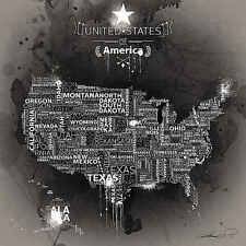 USA Map Ebony by Mikael B Novelty United States America Print Poster 26x26
