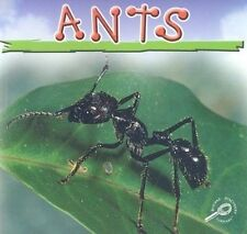 Ants by Jason Cooper (Paperback / softback)