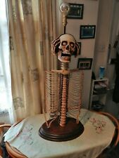 Skeleton CD Rack Table Light