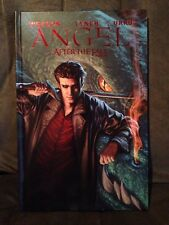 Angel After The Fall Vol 1 Hardcover Buffy Joss Whedon Brian Lynch IDW New