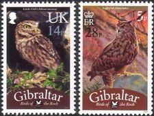Gibraltar 2013 Owls/Birds/Nature/Wildlife/Conservation/Surcharge 2v set (b141a)