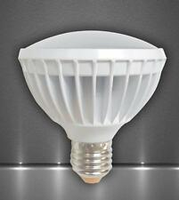 Kumho LED 15 W PAR30 Light Bulb 2700K Warm White E26 E27 Downlight 100 W
