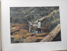 Guyane Francaise/Gravure 19°in folio couleur/Saint-Elie:la battée recherche d'or