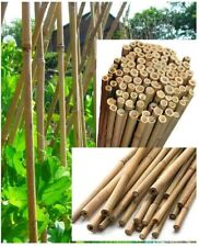 More details for 30x 6 foot strong natural bamboo canes garden support pole plant stick vegetable