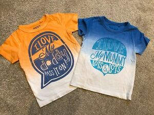 Boys Age 12-18 Months Next Tshirts X 2