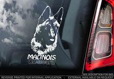 Belgian Malinois - Car Window Sticker - Dog Sign -V02