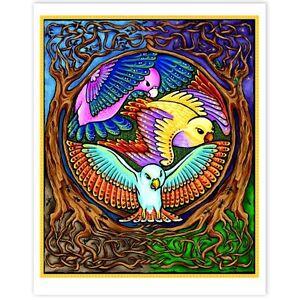 © ART - Bird Mandala Insect Nature Wildlife Original Artist Print by Di