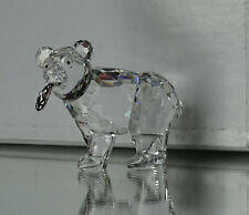 SWAROVSKI  Junger Grizzly  Grizzly Cub  2001 - 2006  TOP ZUSTAND MINT  261925