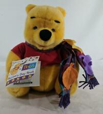 LM Vintage Mattel 20388 Winnie The Pooh Blustery Day Pooh Pellet Filled Teddy NW