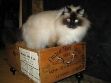 Custom Cat Bed made with Vintage Wine Crates and Rh solid brass hardware