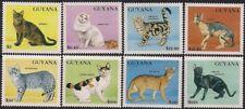 Guyana Stamp - Cats Stamp - NH