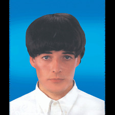 Beatles Wig Brown Wig Man Mens Wig Party Dress up Halloween Costume