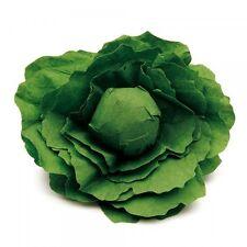 Wooden pretend role play food Erzi play kitchen, shop: Vegetable Lettuce, wood+