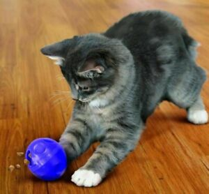 KONG Cat Treat Dispensing Ball Boredom Buster Exercise Play Interactive 7.6cm