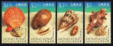 Hong Kong 803-806, MNH. Shells. Clam, Cowrie, Cone, Murex, 1997