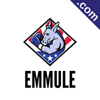 EMMULE.com Catchy Short Website Name Brandable Premium Domain Name for Sale