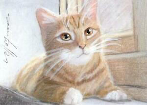 ACEO original pastel drawing ginger kitten cat  by Anna Hoff