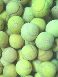 4 6 8 or 10 Used Tennis Balls For Dogs. Sanitised Branded Balls. Bargain Price !