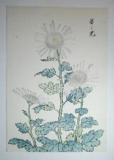 """Kiku"" Chrysanthème Fleur, maman II: An Authentic japanese woodblock print"