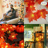 10/20/40 LED Fall Maple Leaves Fairy String Light Autumn Leaf Lamp Garland Decor