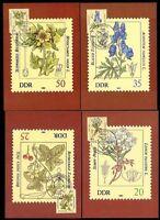 DDR 2691/6 Maximumkarten Giftpflanzen , Blauer Eisenhut , Herbstzeitlose