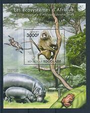 [27015] Togo 2011 Wild Life African Ecosystem Monkey MNH Sheet