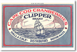 Cape Cod Cranberries Clipper Brand - Vintage Ad POSTER