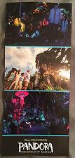 "Disney's Animal Kingdom Pandora The World Of Avatar Grand Opening 9"" X 4"""